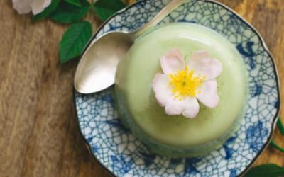 Matcha Green Tea Panna Cotta